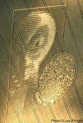Alien Face Crop Circle http://www.cropcircleresearch.com/articles/alienface.html